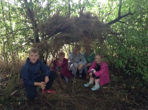 den-building-year-6-and-year-3-431